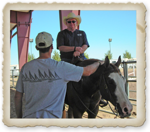 Rider Lessons in Phoenix Aream